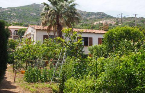 Villa de 164 m² avec jardin arboré de 800 m²