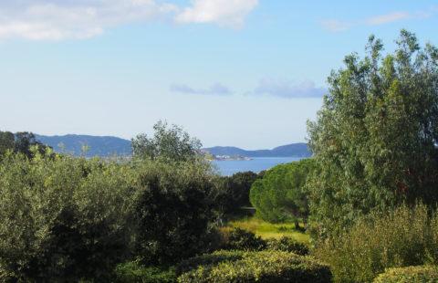 T2 et studio avec terrasses et vue mer