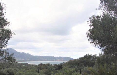 Route du bord de mer maison sur 2441 m² de terrain