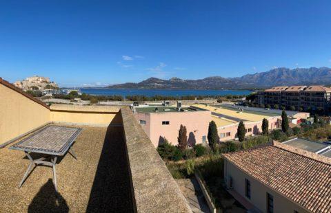 T2 de 39 m² avec terrasse de 27 m²